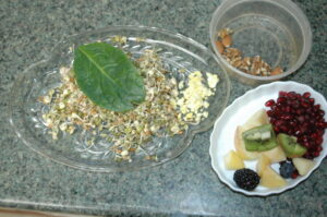 Sample of a 'Balanced' meal for a medium-sized parrot.