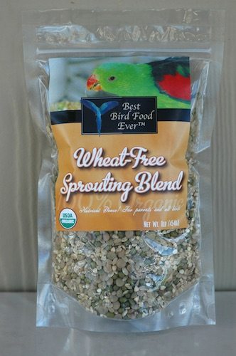 Wheat Free Sprouting Blend 1#