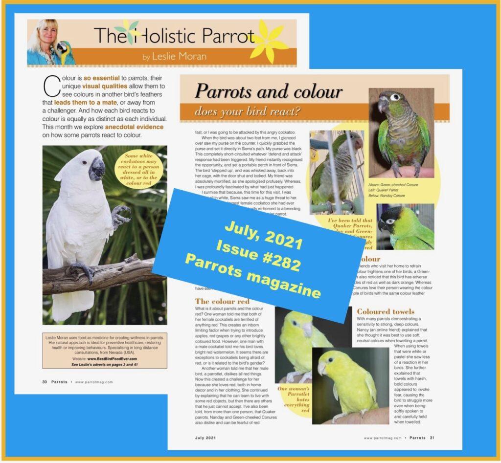 The Holistic Parrot, Parrots magazine